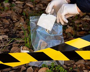 VTC service homicide cleanup